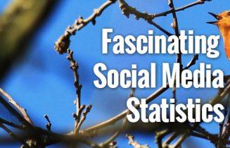 FascinatingSocialMediaStats