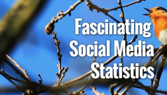 FascinatingSocialMediaStats