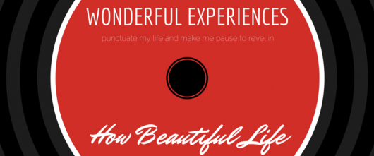 #54 Wonderful experiences punctuate my life and make me pause to revel in how beautiful life truly is.